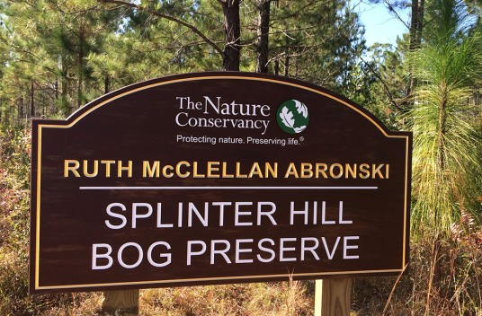 Splinter Hill Park Sign