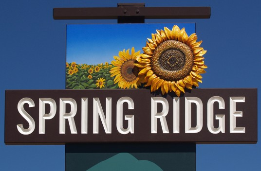 Spring Ridge Town Welcome Signs