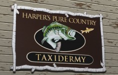 Harpers Taxidermy Fish Sign