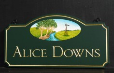 Alice Downs Property Sign