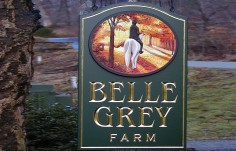 Belle Grey Horse Farm Sign