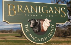 Branigans Farm Animal Sign