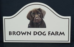 Brown Dog Farm Sign