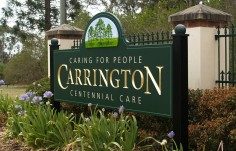 Carrington Subdivision Entrance Sign