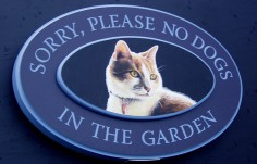 Sorry No Dogs Pet Sign