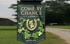Come By Chance Farm Hanging Sign