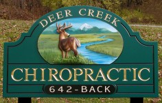 Deer Creek Chiropractic Medical Office Sign