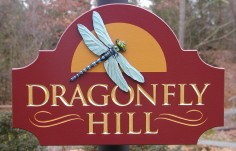 Dragonfly Hill Property Sign