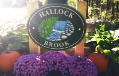 Hallock Brook Property Sign Onsite