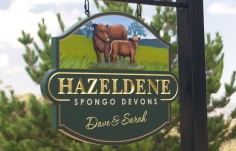 Hazeldene Farm Animal Sign