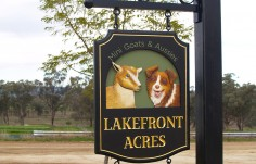 Lakefront Acres Farm Sign