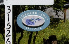 Lavender Cove Sign