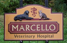 Marcello Veterinary Hospital Sign