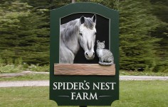Spider's Nest Farm Animal Sign