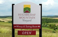Sugarloaf Mountain Vineyard Sign