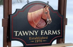 Tawny Farms Horse Sign