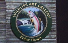Wildlife Art Gallery Fish Sign Thumb