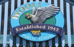 Wooli Public School Sign