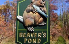 Beaver's Pond Animal Sign