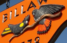 Billawin Property Sign Up Close