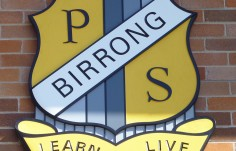 Birrong Public School Wall Crest up close