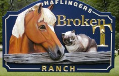 Broken T Ranch Sign