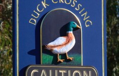 Duck Crossing Sign Close