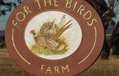 For the Birds Farm Sign
