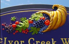 McIvor Creek Winery Sign Detail