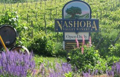 Nashoba Valley Winery Sign