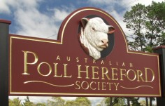 Poll Hereford Club Sign