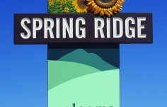 Spring Ridge Town Welcome Sign